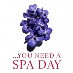 You need a Spa Day at FLS Bath and Wells Beauty salons