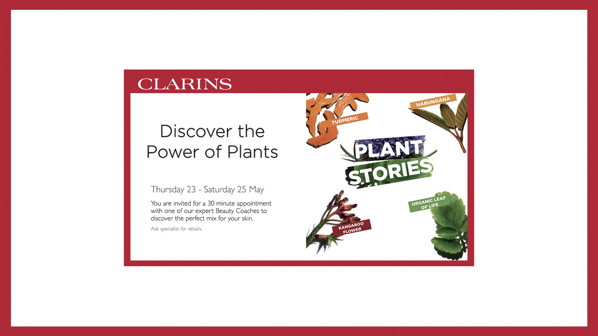 Clarins Beauty Activity Event